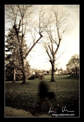 Autumn_foto_Anze_Vodovnik-75